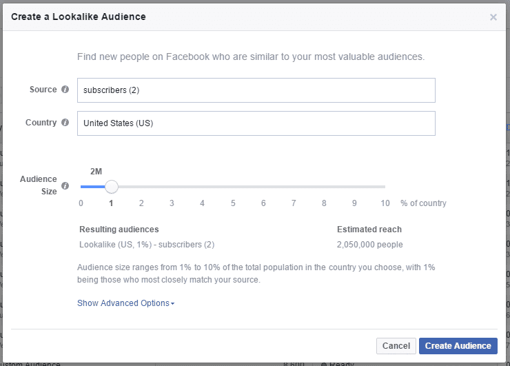 facebook custom audience look alike