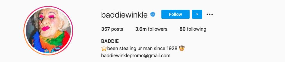 instagram influencer bios